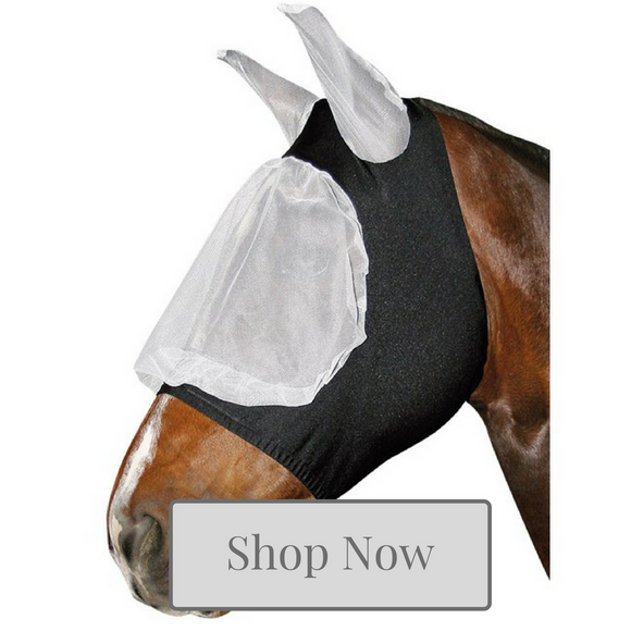 Horse Fly Mask Collection at Kola-Beanz
