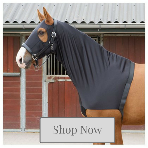 Horse Stretch Hoods & Shoulder Guards