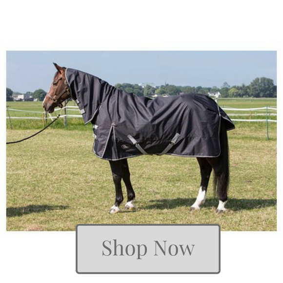 Horse Turnout Rug Collection - Kola-Beanz