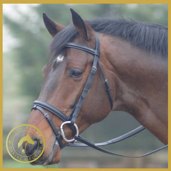 Cottage Craft Oxford Bridle - Havana - Bridles