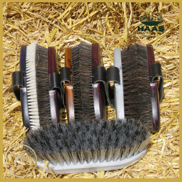 Universal For All Horses Essential Grooming Kit with HAAS Brushes