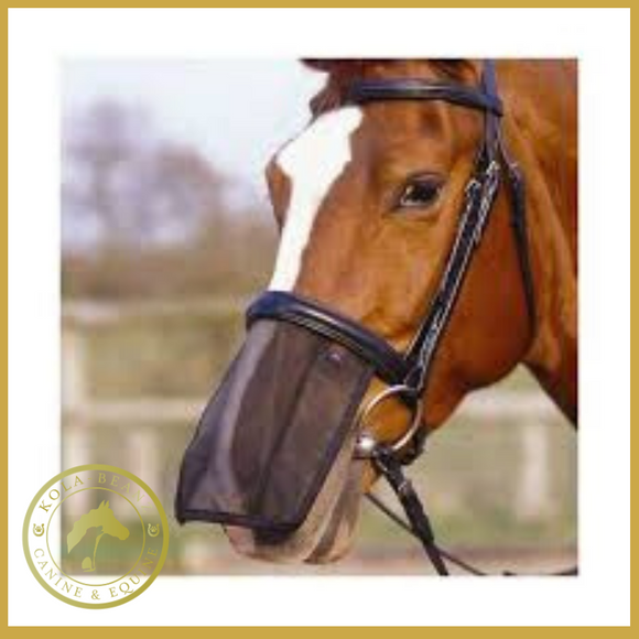 Aerborn Nose Net/shield - Horse Nose Net