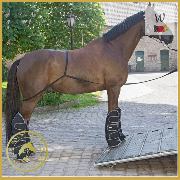 Waldhausen Loading Aid - Horse Travel Equipment