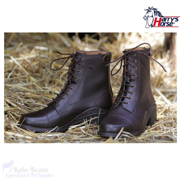 Harrys Horse Smart Jodphur Boots - Brown