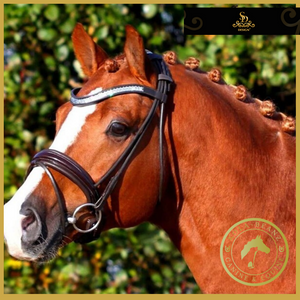 Crown Masterpiece Rolled Bridle -  Brown/Patent