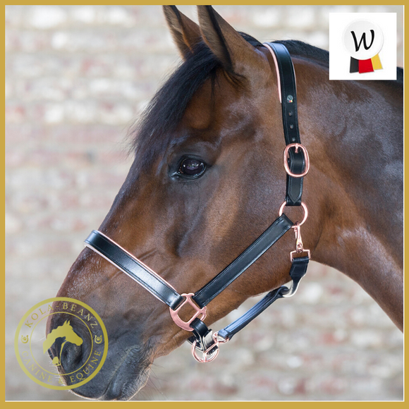 Waldhausen Rose X Line Headcollar - Head Collar