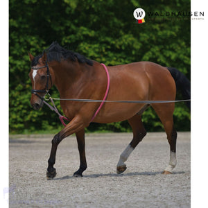 Waldhausen Soft Lunging Aid/rein - Horse Lunging Equipment