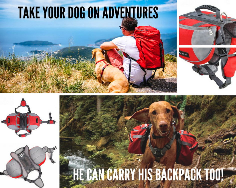 Dog Backpack Saddle