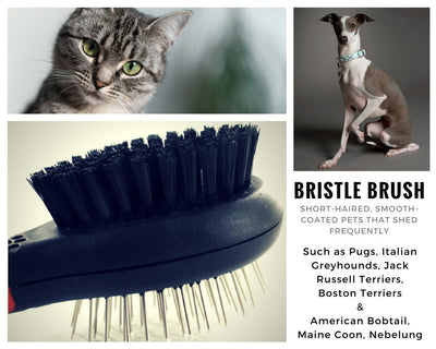 2 in 1 Bristle Brush