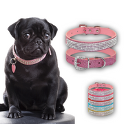Charlie Buddy - Hand picked products for your dogs and cats-Elegant Diamond Rhinestone Collar