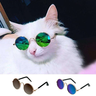 Charlie Buddy - Hand picked products for your dogs and cats-Fashion Sunglasses for Small Pets
