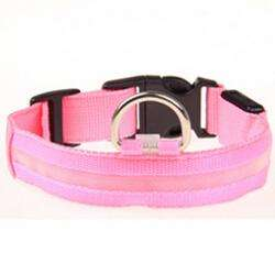 Charlie Buddy - Hand picked products for your dogs and cats-LED Collars for Night Time Safety & Loss Prevention-Pink / L
