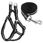 Charlie Buddy - Hand picked products for your dogs and cats-Reflective Safety Leash & Harness Combo-Black / S
