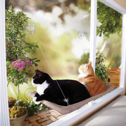 Charlie Buddy - Hand picked products for your dogs and cats-Sunny Seat Cat Window Bed
