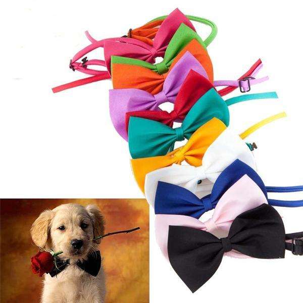 Charlie Buddy - Hand picked products for your dogs and cats-Super Cute Bow Tie Collar