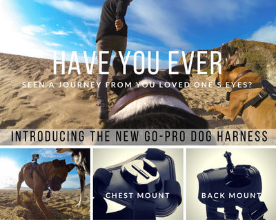 Dog Harness Chest Mount for GoPro Cameras