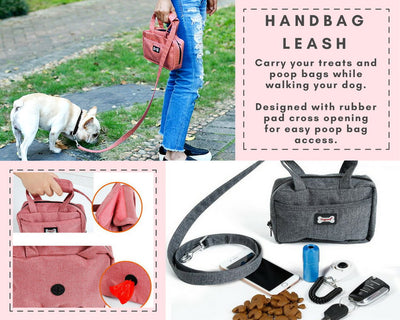 Food Handbag and Leash