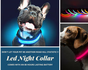 LED Collars for Night Time Safety & Loss Prevention
