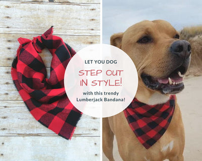 Cotton Trendy Lumberjack Dog Bandana