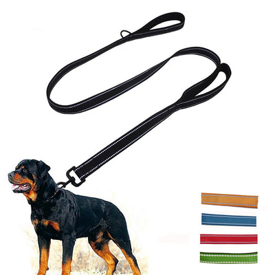 Reflective Dog Leash with 2 Padded Handles