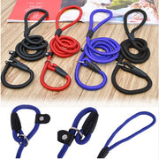New Dog Slip Lead for Small Dogs