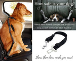 Dog Leash With Car Seat Buckle