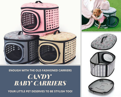 Cat & Small Dog Hard Sided Carrier
