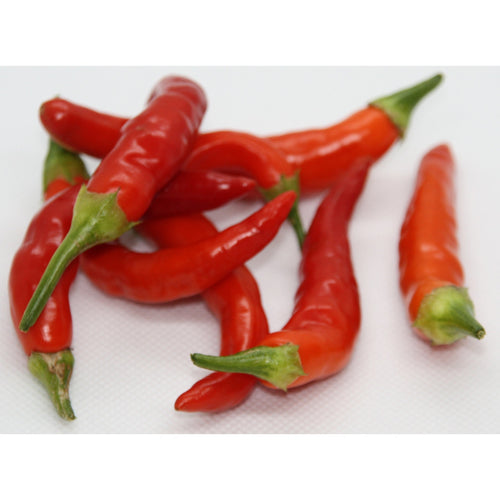 Aji Amarillo chilifrø