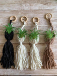 Macreme Air Plant Hanger by DevonMai Designs