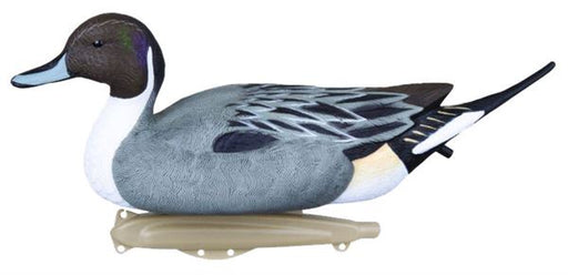 Flambeau Classic Pintail Duck Decoy - Pack of 6