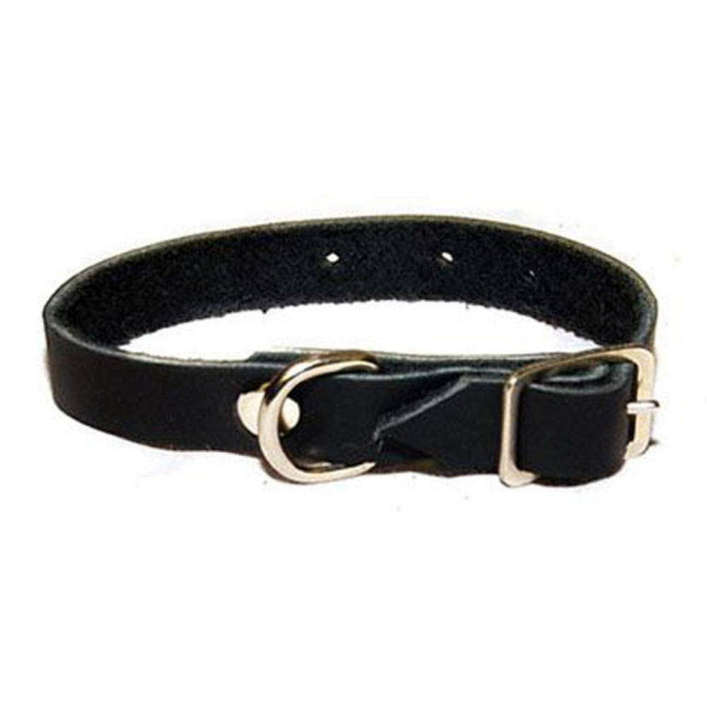 Leather Ferret Collar