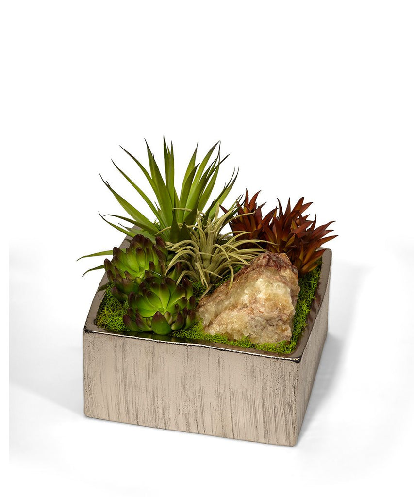 Succulents in Silver Square Container
