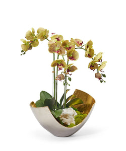 Orchids in Two-toned Metal Bowl