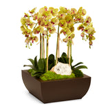 Orchid and Geode in Large Metal Box