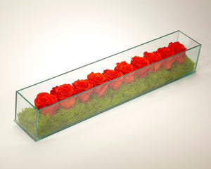 Preserved Roses in Rectangle Glass Box - OR