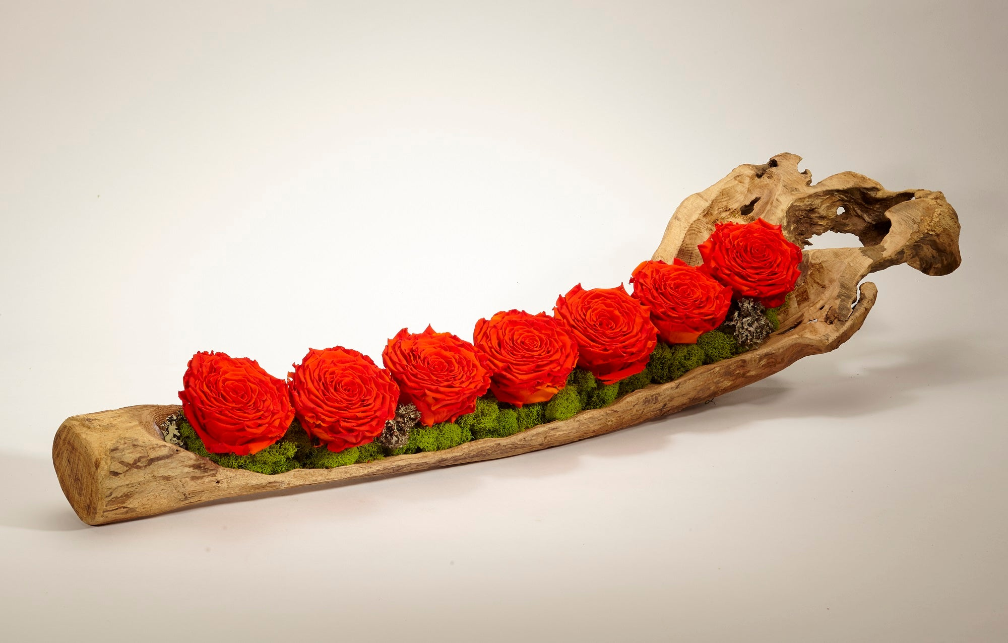 Preserved Roses in Elongated Wood Log - OR