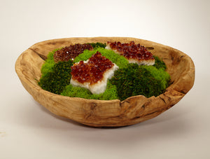 Organic Moss Garden in Wood Bowl - Citrine