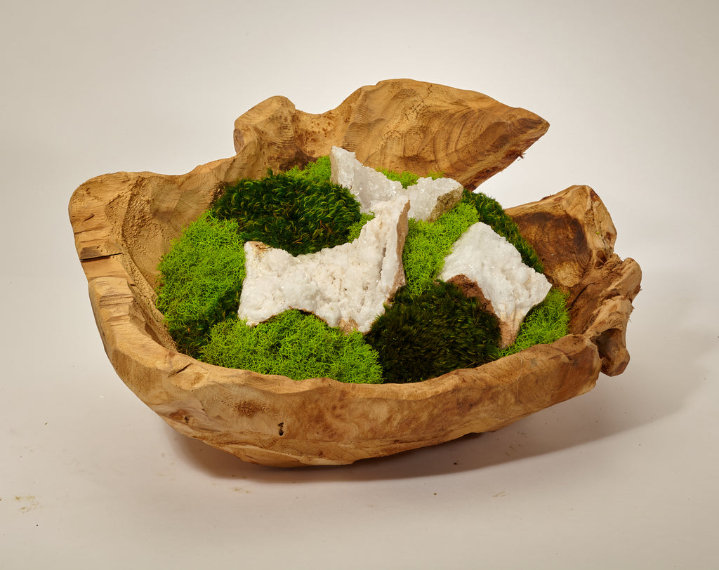Organic Moss Garden in Hand Carved Wood Bowl - Quartz