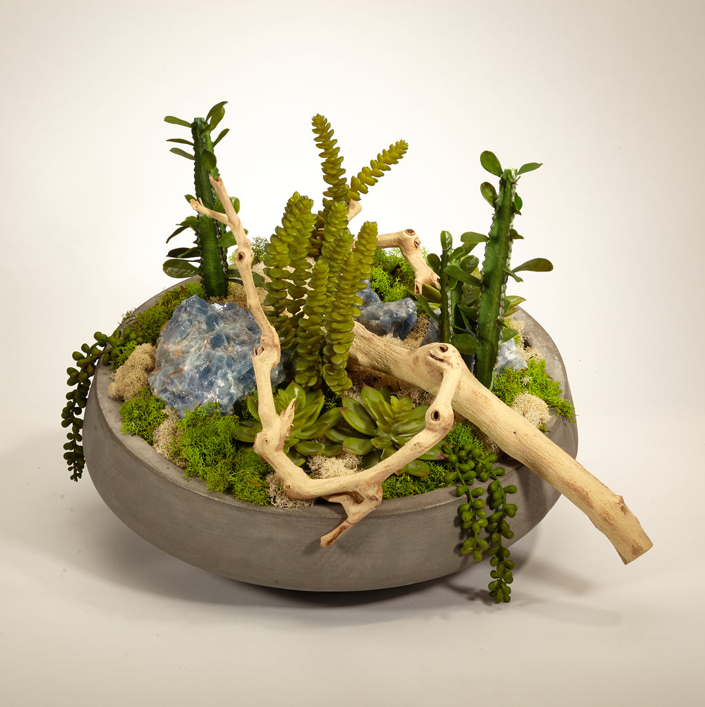 Succulents and Drift Wood in Large Concrete Bowl - Blue Calcite