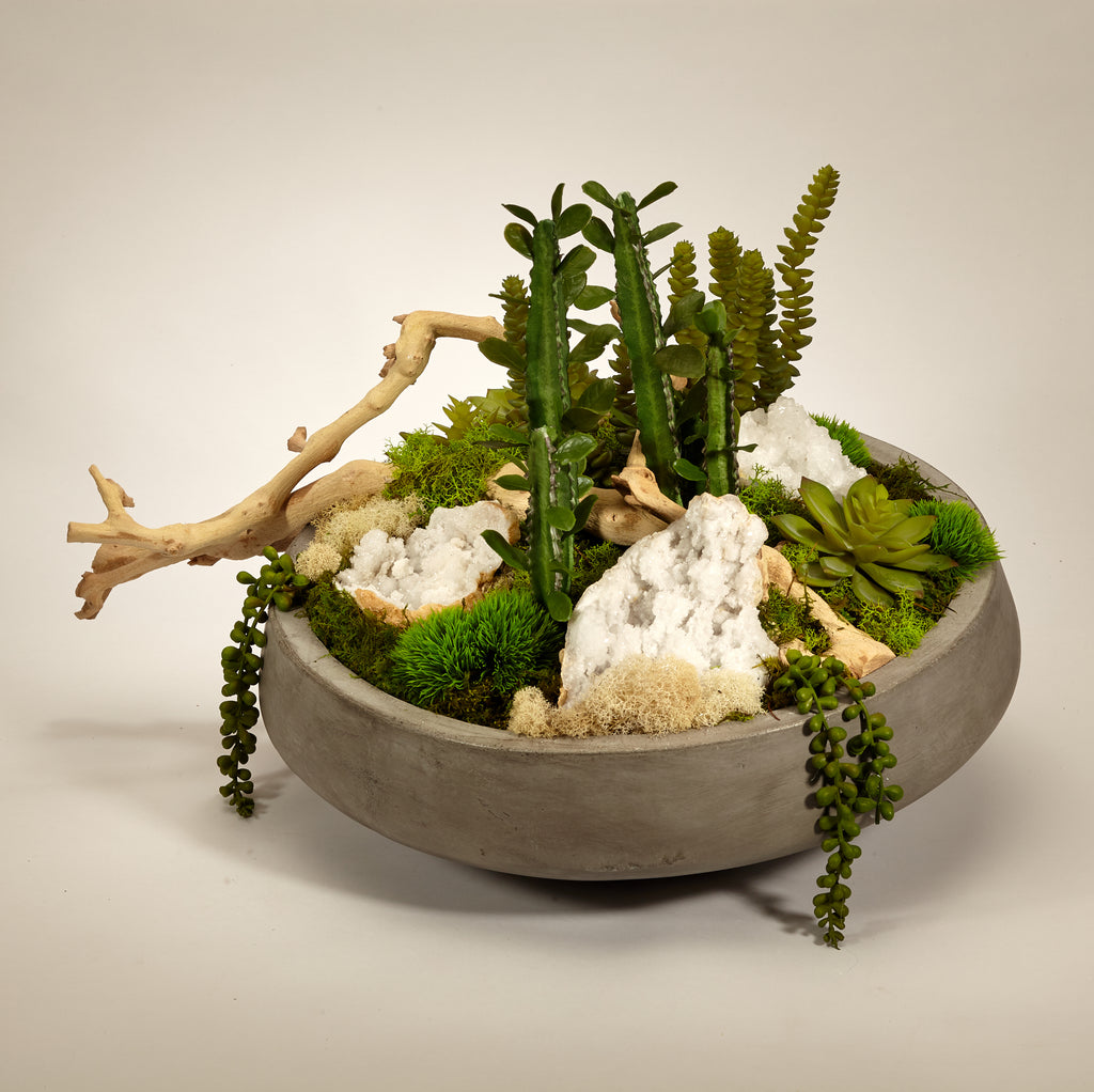 Succulents and Drift Wood in Large Concrete Bowl - Quartz