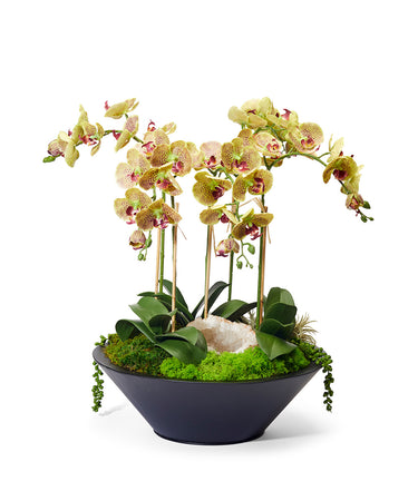 Orchids in Sleek Metal Container