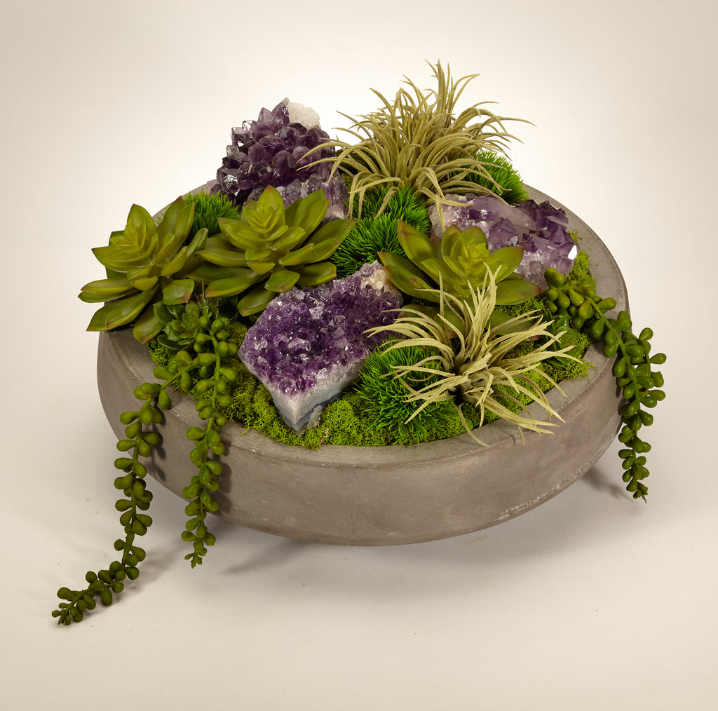 Succulents in Concrete Bowl - Amethyst