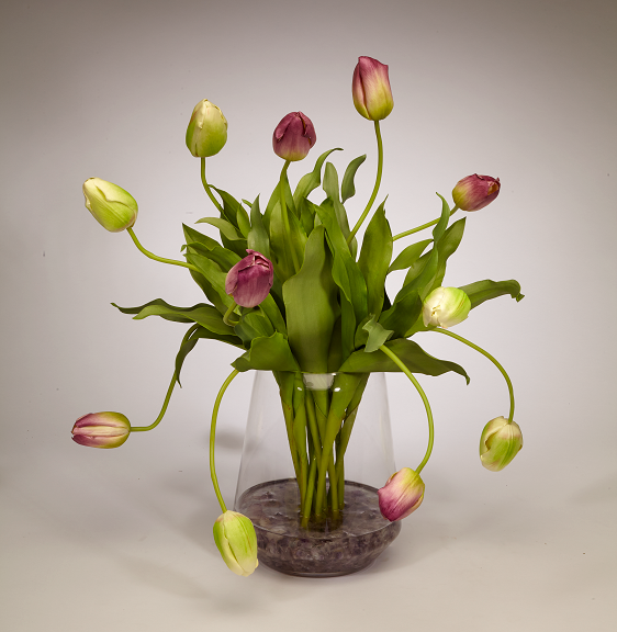 Tulips in Clear Glass Vase - PU/GR