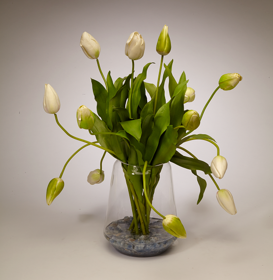 Tulips in Clear Glass Vase - WH/GR