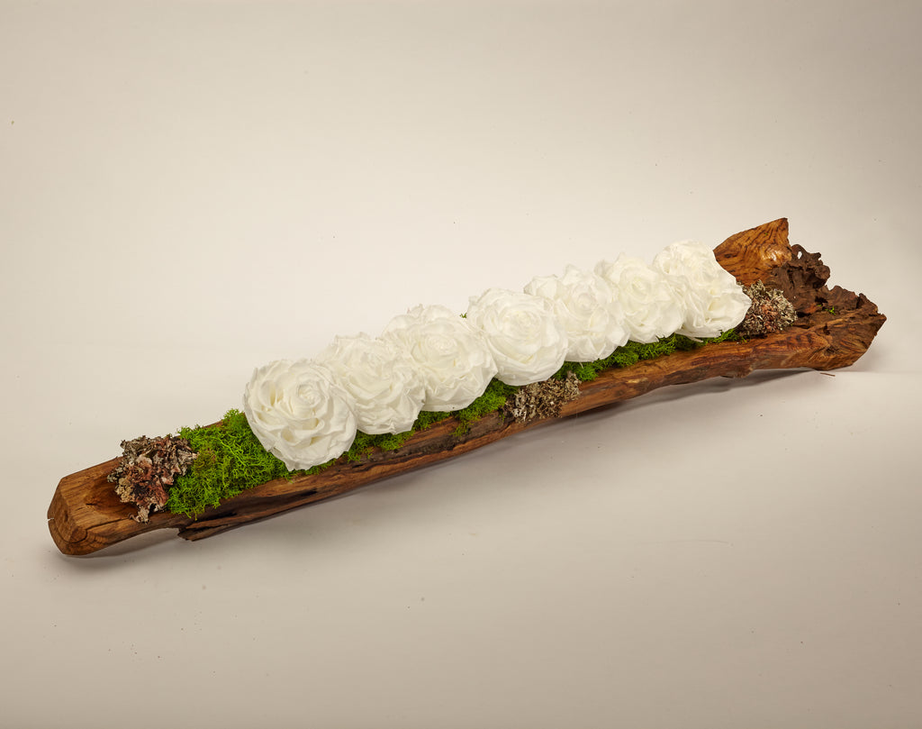 Preserved Roses in Elongated Wood Log - WH