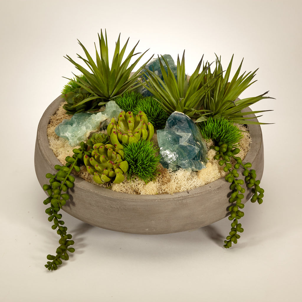 Succulents in Concrete Bowl - Fluorite