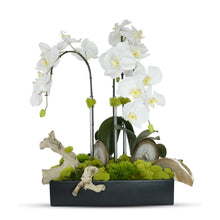 Load image into Gallery viewer, Orchids in Rectangle Ceramic Container