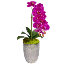 Load image into Gallery viewer, Single Orchid in Silver Vase