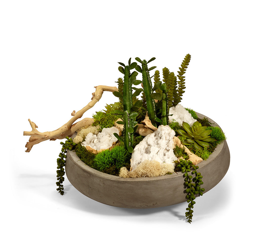 Succulent Garden in Large Concrete Bowl