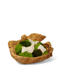 Moss Garden in Hand Carved Wood Bowl